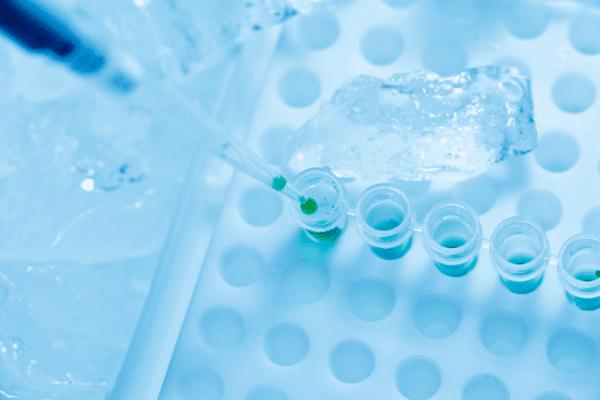 biologia molecular laboratorio Biología molecular: definición y aplicaciones
